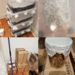 Eight targets arrested in Operation Roam – Rogue Radar manhunt